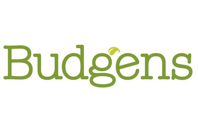 Fog Bandit client - Budgens